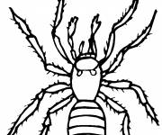 Coloring pages House spider
