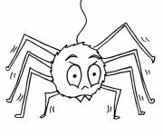 Free coloring and drawings Single spider Coloring page