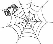 Coloring pages Spider and its web for children