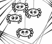 Coloring pages Spider Babies