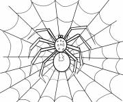 Coloring pages Spider in black and The Web