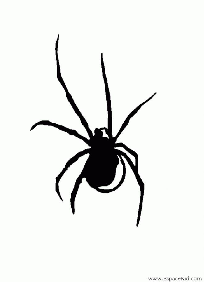 Free coloring and drawings Spider in black online Coloring page