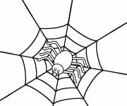 Coloring pages Spider on its stylized web
