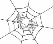 Coloring pages Spider waits for its victim
