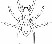 Coloring pages Spider with eyes in black