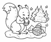 Coloring pages A drawing of Squirrel in black and white