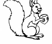 Coloring pages A drawing of Squirrel to cut out