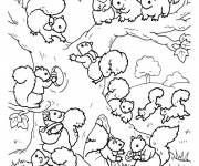 Coloring pages A Squirrel