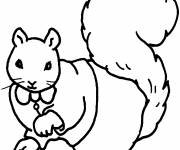 Coloring pages Humurous Squirrel