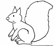 Coloring pages Squirrel babies