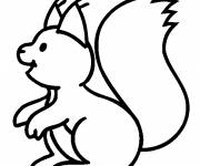Free coloring and drawings Squirrel colorful page Coloring page
