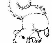 Coloring pages Squirrel downloadable