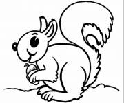 Coloring pages Squirrel for children to print