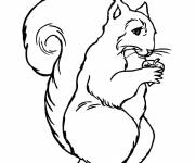 Coloring pages Squirrel forest