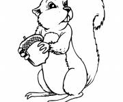 Coloring pages Squirrel in color to draw