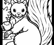 Coloring pages Squirrel's little ones