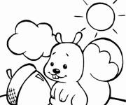 Coloring pages Squirrel too cute