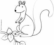Coloring pages The animal of Squirrel