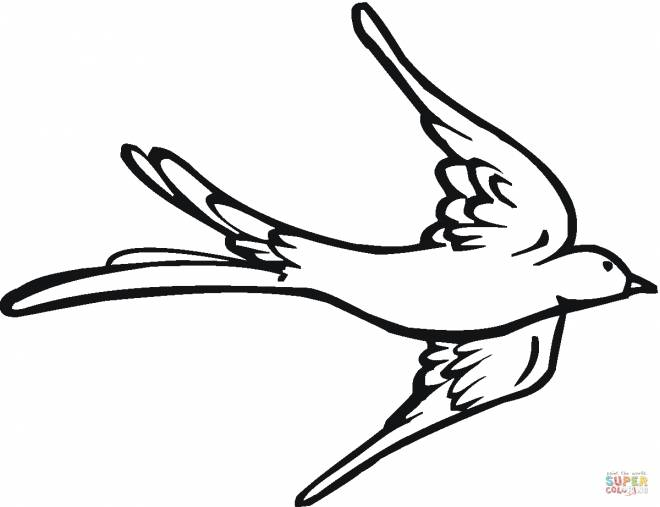 Free coloring and drawings Carving swallow Coloring page