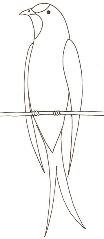Free coloring and drawings Swallow on a wire easy Coloring page