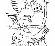 Coloring pages Swallows in flight on tree