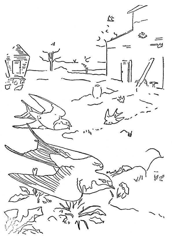 Free coloring and drawings Swallows on earth Coloring page