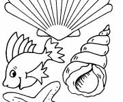Coloring pages Seashells on The Beach