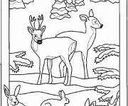 Free coloring and drawings Animals in the Easy Forest Coloring page