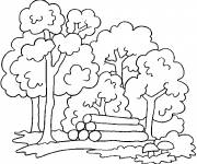Free coloring and drawings Forest color Coloring page
