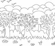 Free coloring and drawings Forest of trees Coloring page