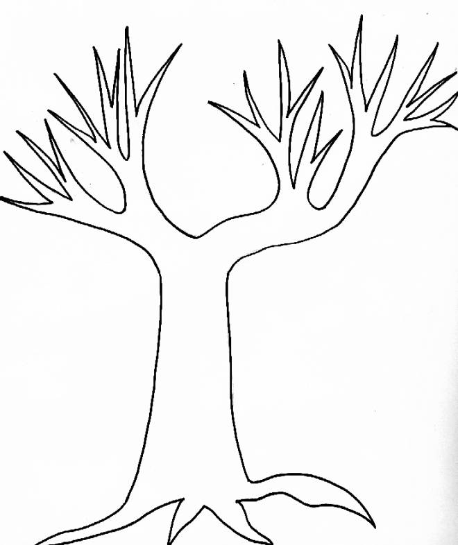 Free coloring and drawings Bare Autumn Trees Coloring page