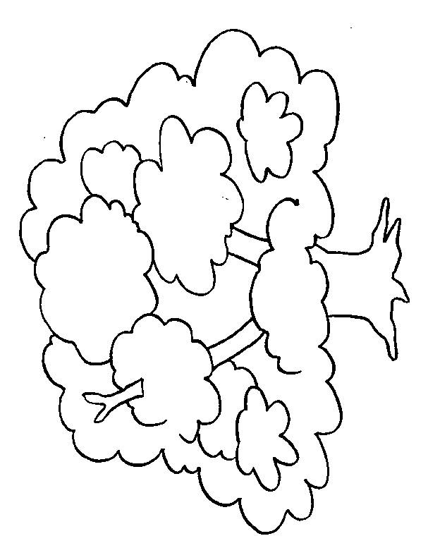 Free coloring and drawings Big tree Coloring page