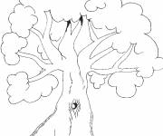 Coloring pages Covered tree