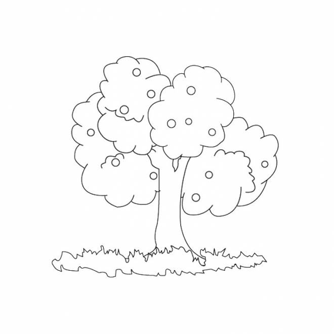 Free coloring and drawings Fruit tree to decorate Coloring page