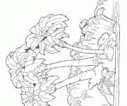 Coloring pages Island Trees