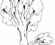 Coloring pages Long tree