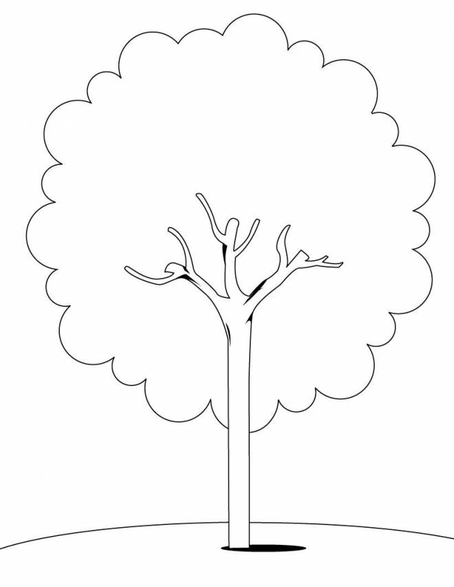 Free coloring and drawings Maternal tree Coloring page