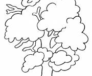 Coloring pages Spring tree for decoration