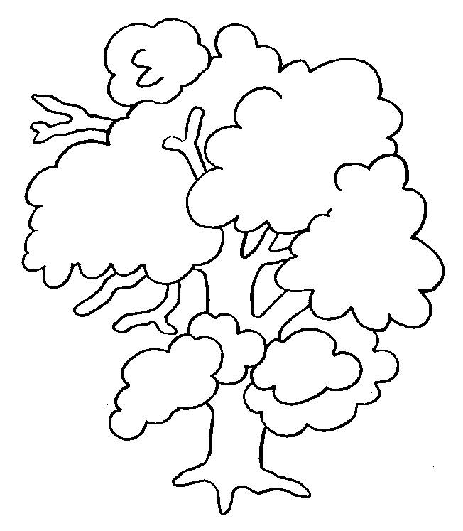 Free coloring and drawings Spring tree for decoration Coloring page