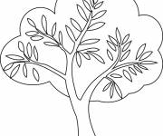 Coloring pages Spring tree in color