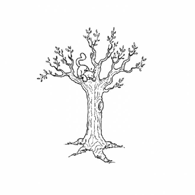 Free coloring and drawings The Cat on the Tree Coloring page