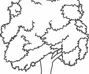 Coloring pages Tree and environment