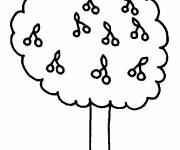 Coloring pages Tree and its Fruits