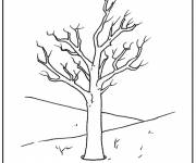 Coloring pages Tree and Nature in Autumn