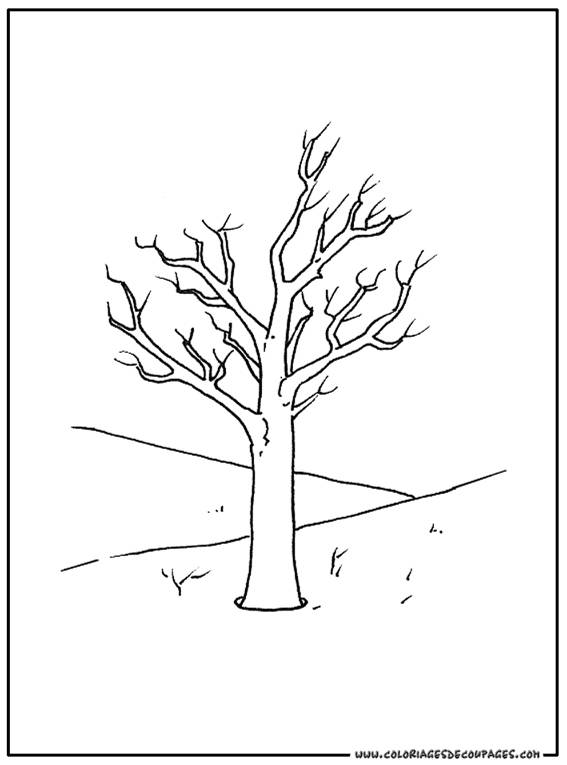 Free coloring and drawings Tree and Nature in Autumn Coloring page