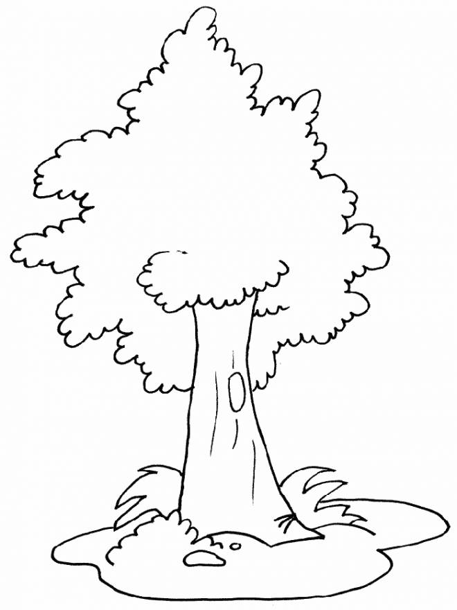 Free coloring and drawings Tree for child Coloring page
