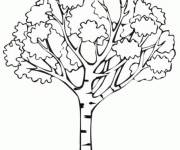 Coloring pages Tree in africa