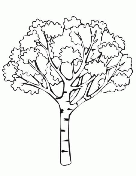 Free coloring and drawings Tree in africa Coloring page