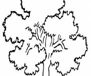 Coloring pages Tree in summer