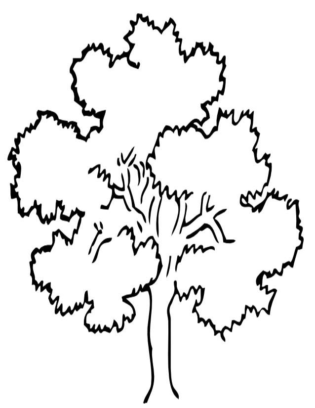 Free coloring and drawings Tree in summer Coloring page